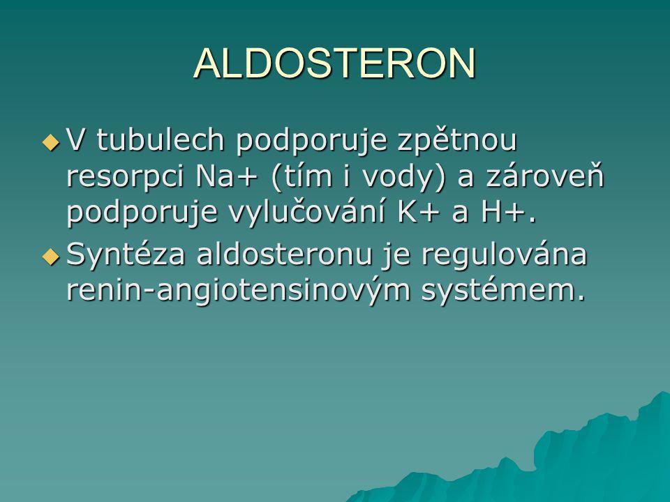 ALDOSTERON V tubulech podporuje zpětnou resorpci Na+ (tím i vody) a zároveň podporuje vylučování K+ a H+.