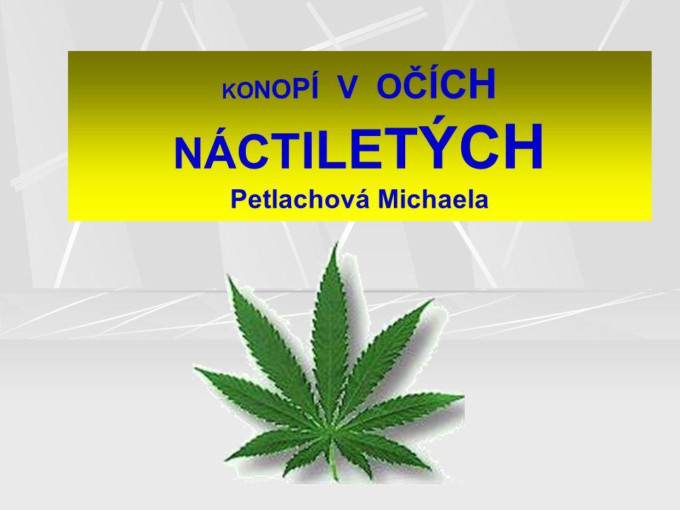 KONOPÍ V OČÍCH NÁCTILETÝCH Petlachová Michaela