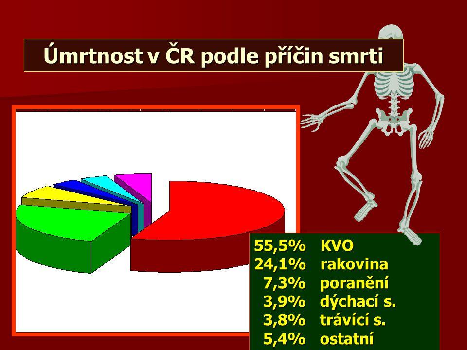 Úmrtnost v ČR podle příčin smrti