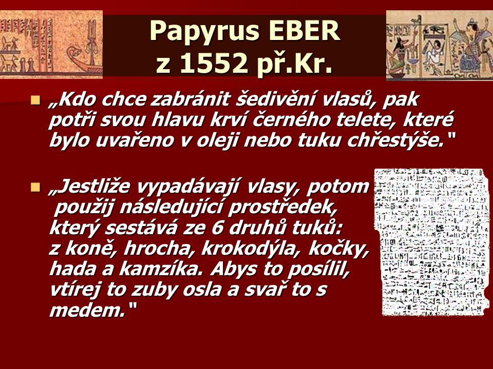 Papyrus EBER z 1552 př.Kr.