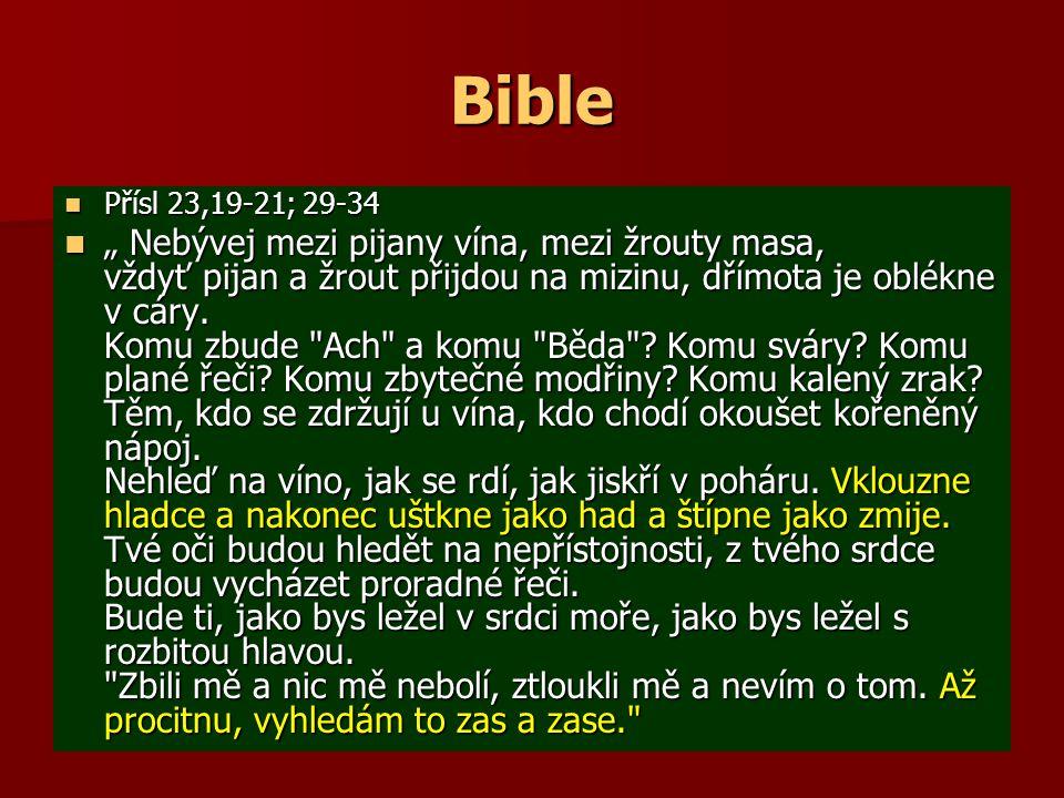 Bible Přísl 23,19-21; 29-34.