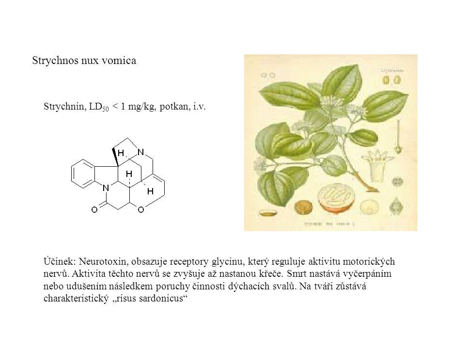 Strychnos nux vomica Strychnin, LD50 < 1 mg/kg, potkan, i.v.