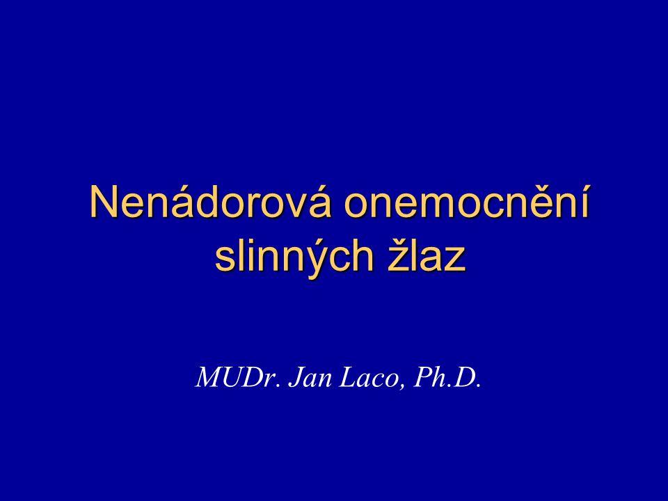 Nenádorová onemocnění slinných žlaz