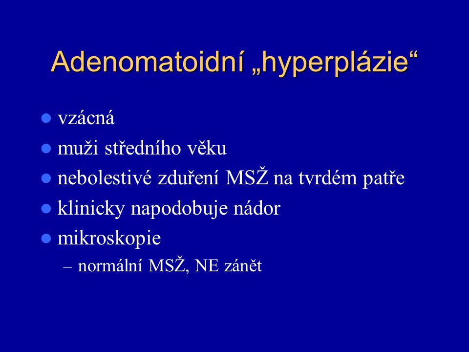 "Adenomatoidní ""hyperplázie"