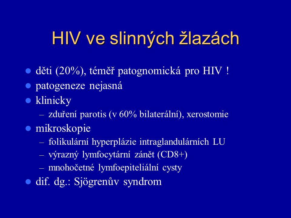 HIV ve slinných žlazách