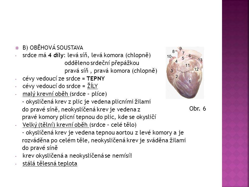 Obr. 6 B) OBĚHOVÁ SOUSTAVA