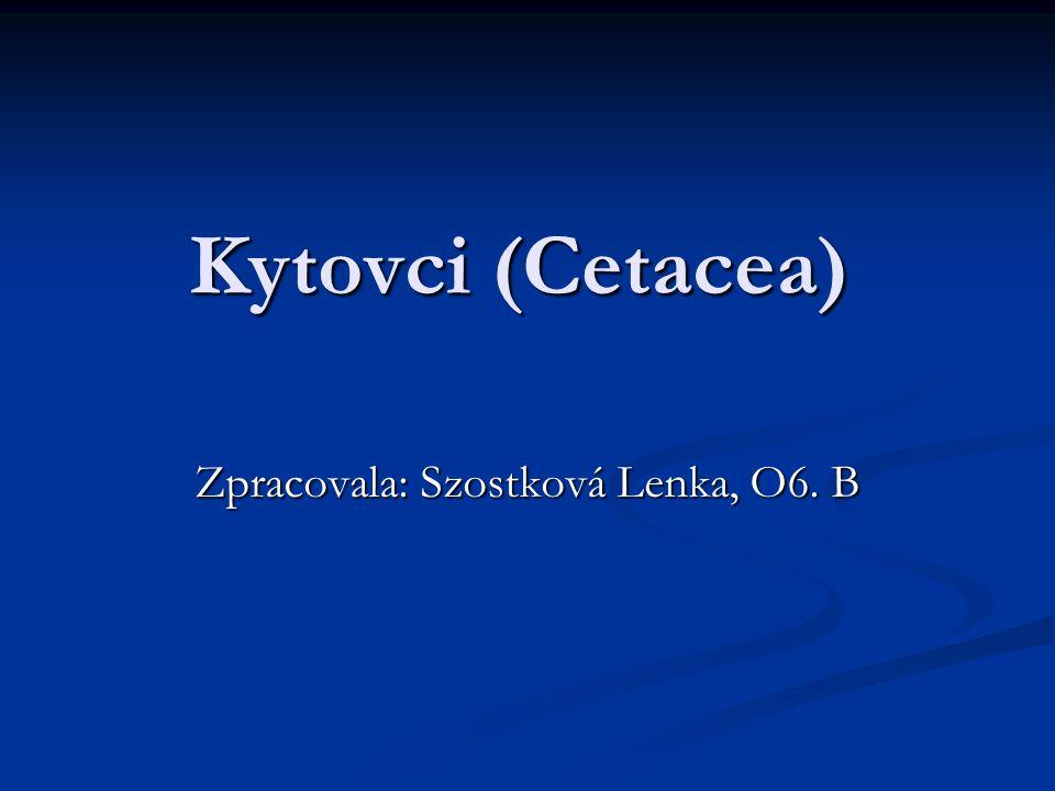 Zpracovala: Szostková Lenka, O6. B