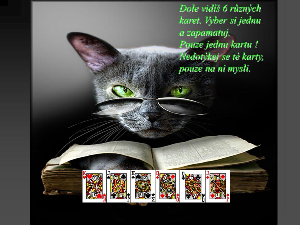 Dole vidíš 6 různých karet. Vyber si jednu a zapamatuj.