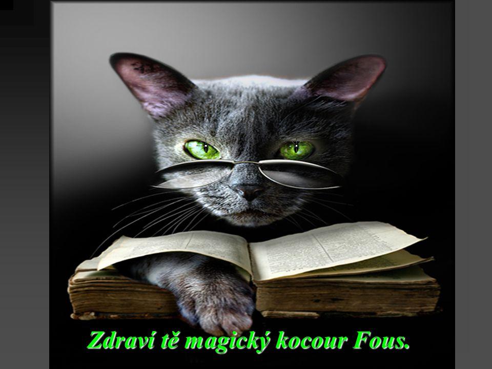 Zdraví tě magický kocour Fous.