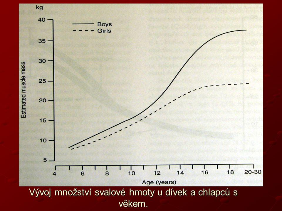 Vývoj množství svalové hmoty u dívek a chlapců s věkem.