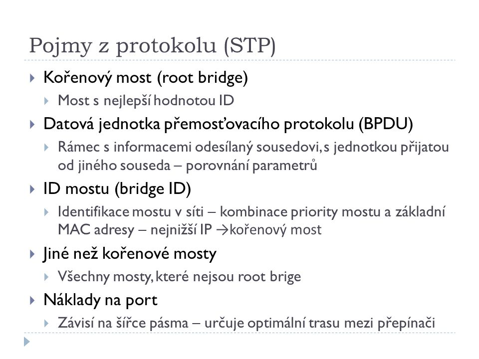 Pojmy z protokolu (STP)