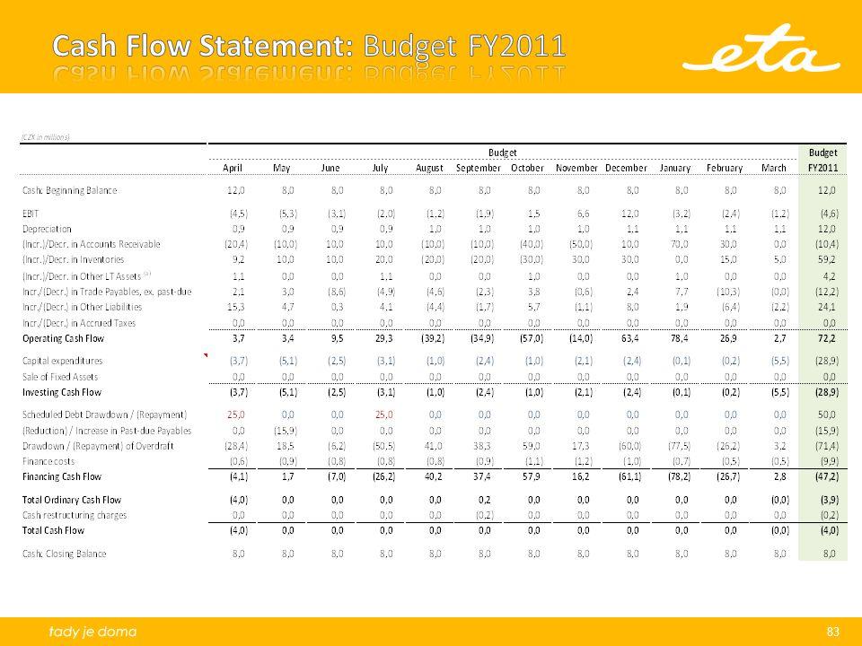 Cash Flow Statement: Budget FY2011