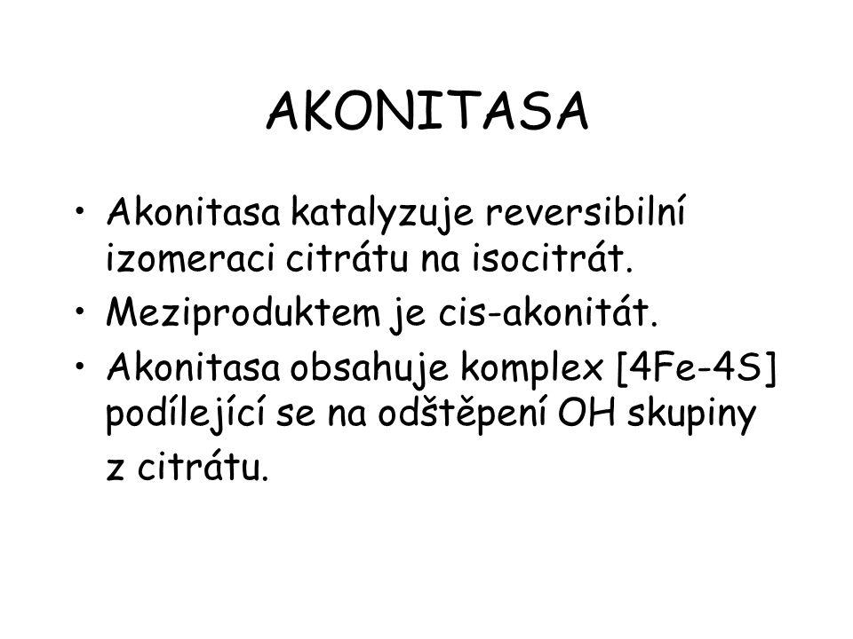 AKONITASA Akonitasa katalyzuje reversibilní izomeraci citrátu na isocitrát. Meziproduktem je cis-akonitát.