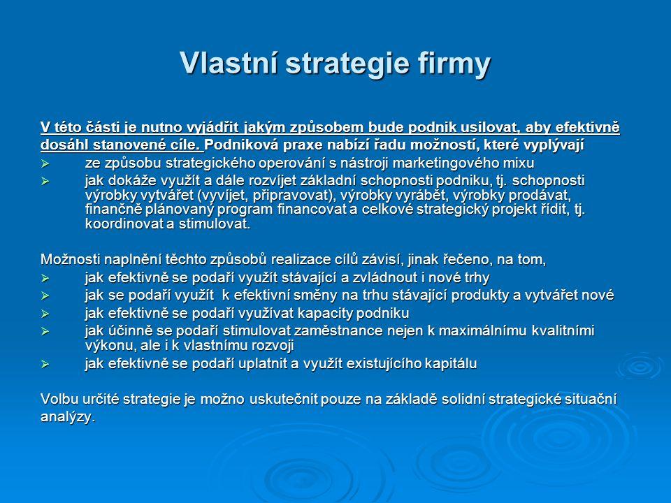 Vlastní strategie firmy