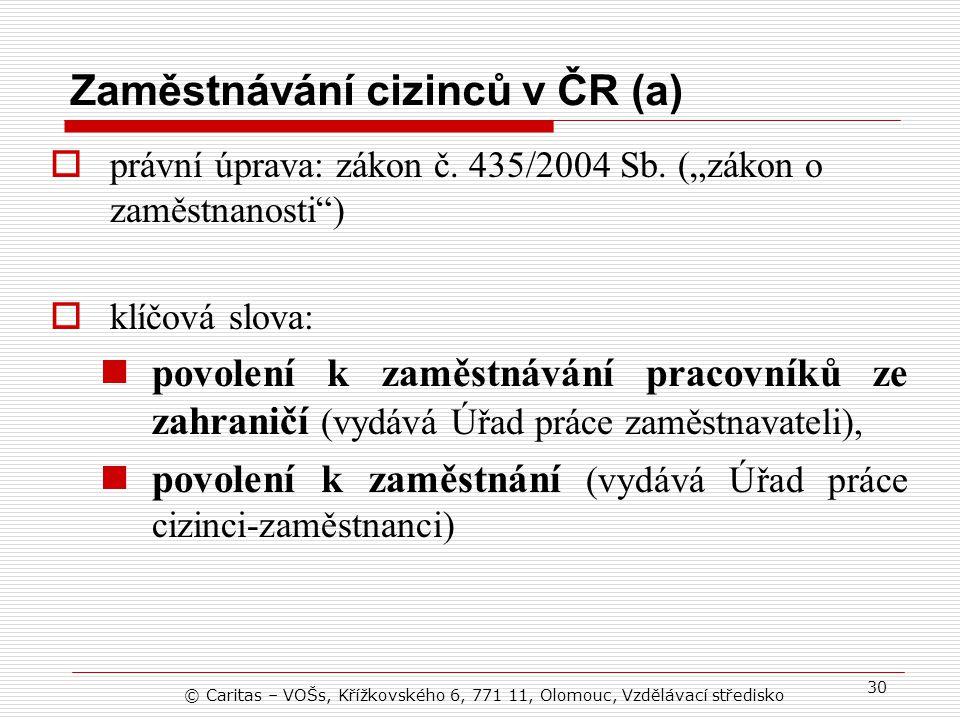 Zaměstnávání cizinců v ČR (a)