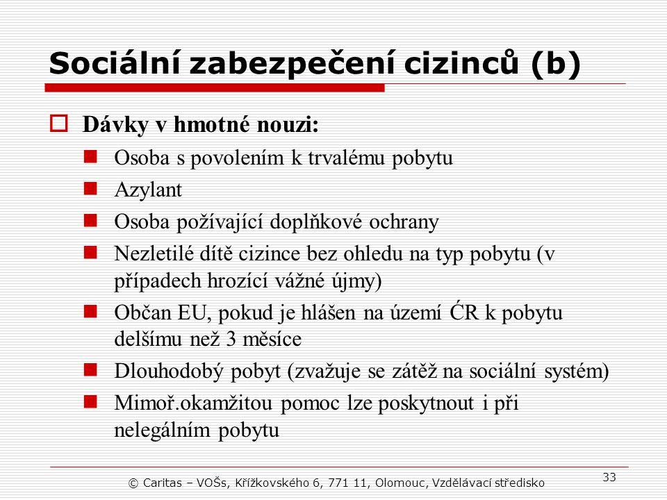 Sociální zabezpečení cizinců (b)