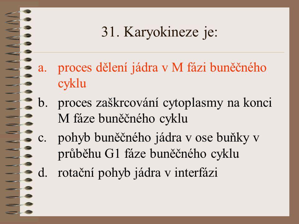31. Karyokineze je: proces dělení jádra v M fázi buněčného cyklu