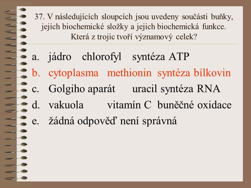 jádro chlorofyl syntéza ATP cytoplasma methionin syntéza bílkovin