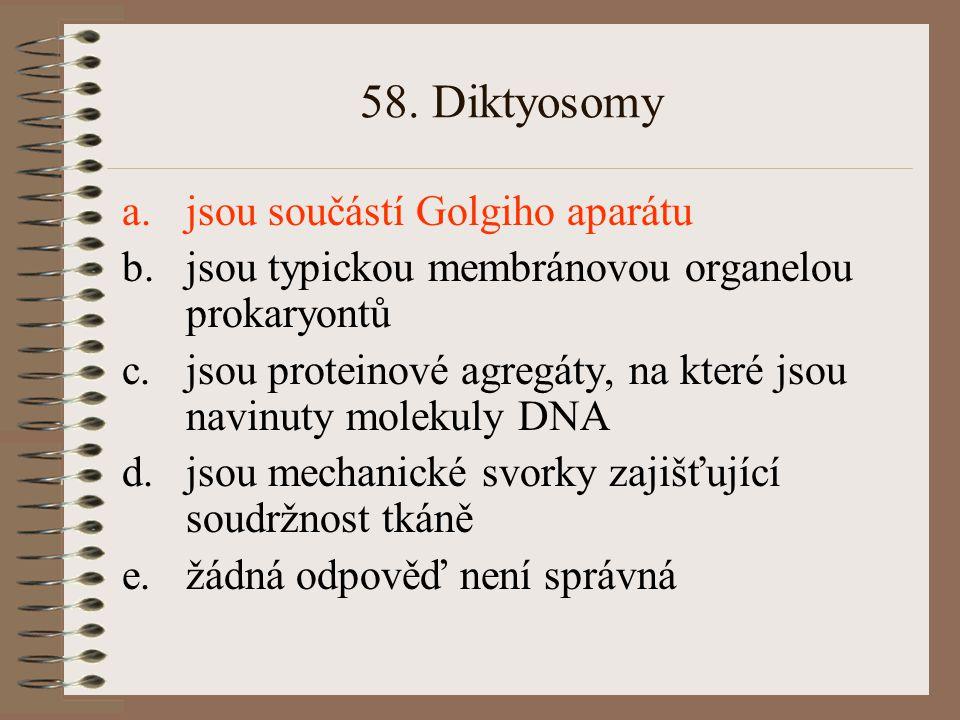 58. Diktyosomy jsou součástí Golgiho aparátu
