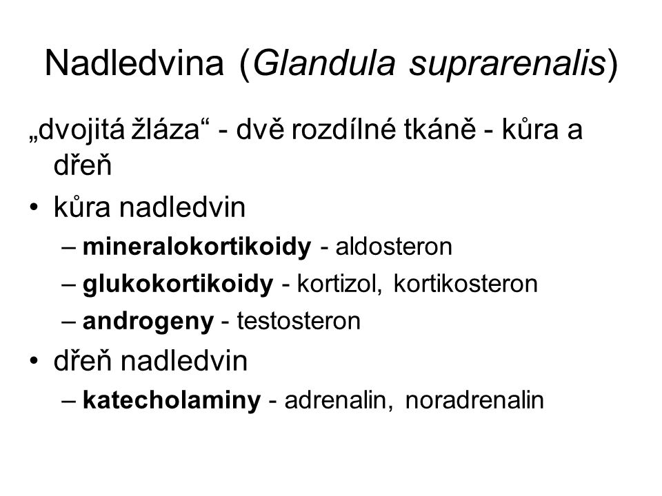 Nadledvina (Glandula suprarenalis)