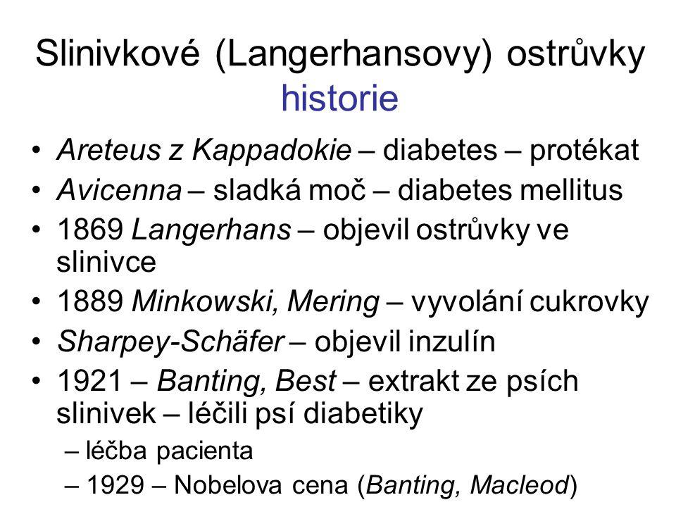 Slinivkové (Langerhansovy) ostrůvky historie