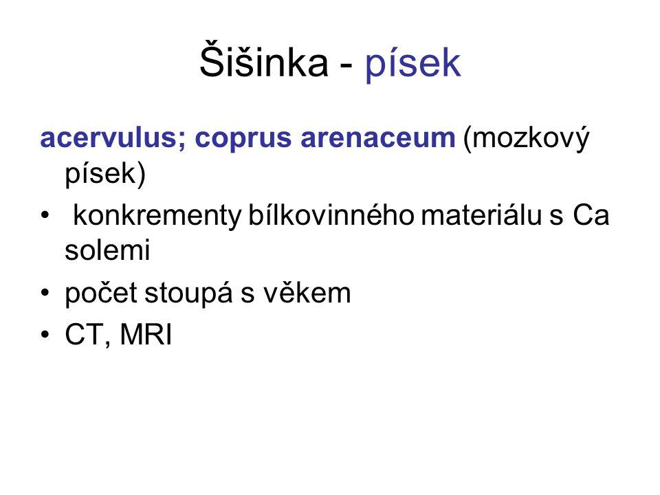 Šišinka - písek acervulus; coprus arenaceum (mozkový písek)