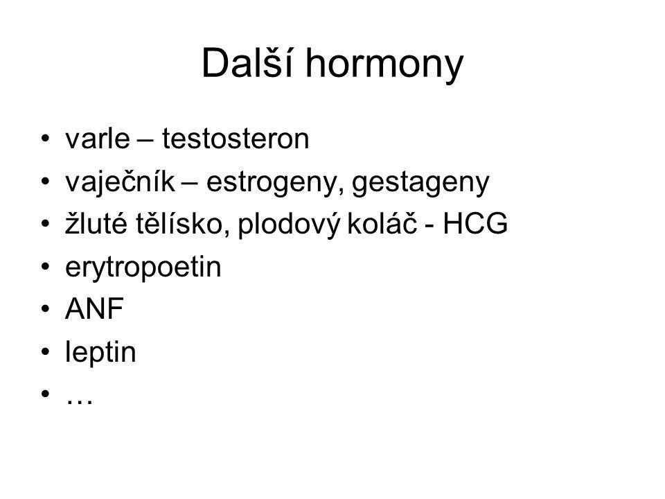 Další hormony varle – testosteron vaječník – estrogeny, gestageny