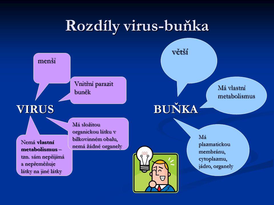 Rozdíly virus-buňka VIRUS BUŇKA větší menší Vnitřní parazit buněk