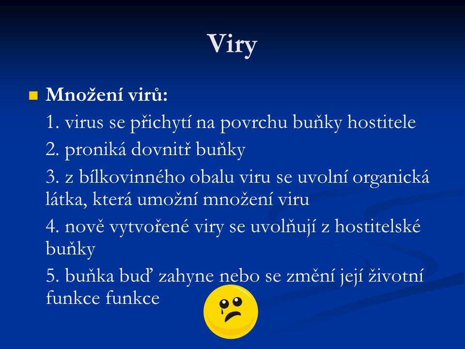 Viry Množení virů: 1. virus se přichytí na povrchu buňky hostitele