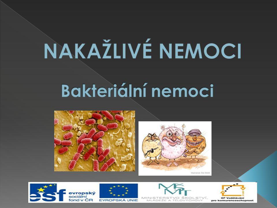 NAKAŽLIVÉ NEMOCI Bakteriální nemoci