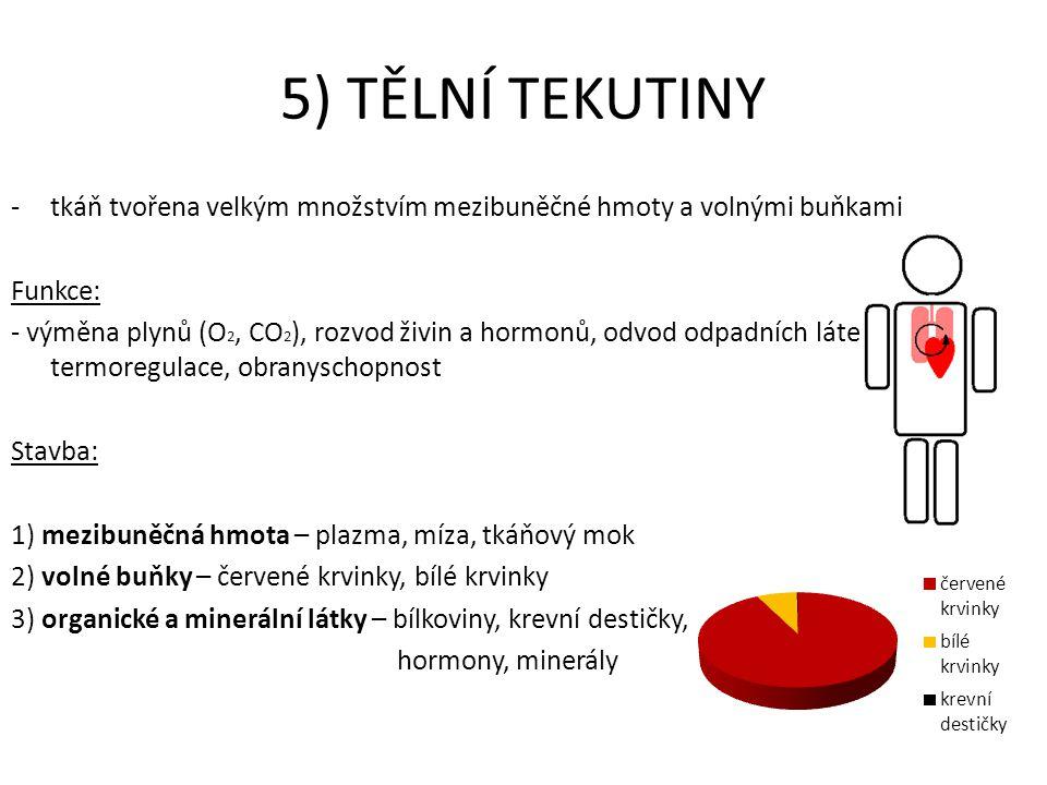 5) TĚLNÍ TEKUTINY tkáň tvořena velkým množstvím mezibuněčné hmoty a volnými buňkami. Funkce: