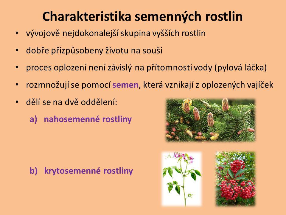 Charakteristika semenných rostlin