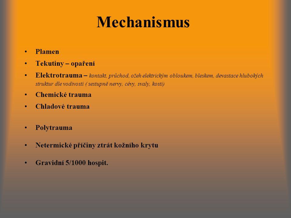 Mechanismus Plamen Tekutiny – opaření
