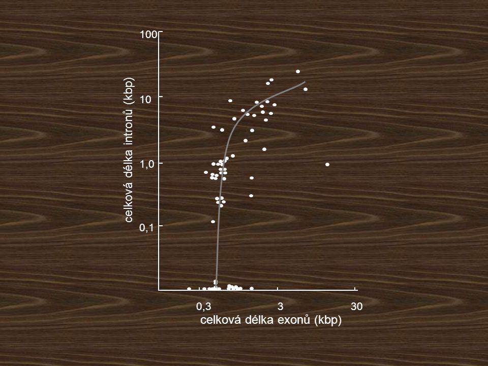 celková délka intronů (kbp)