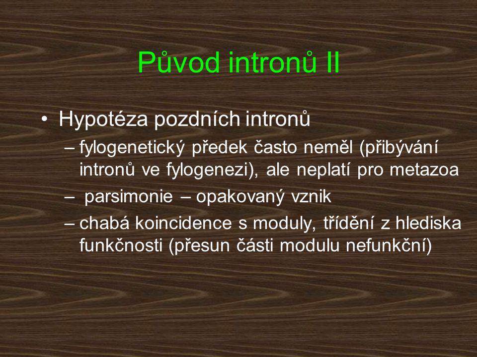 Původ intronů II Hypotéza pozdních intronů