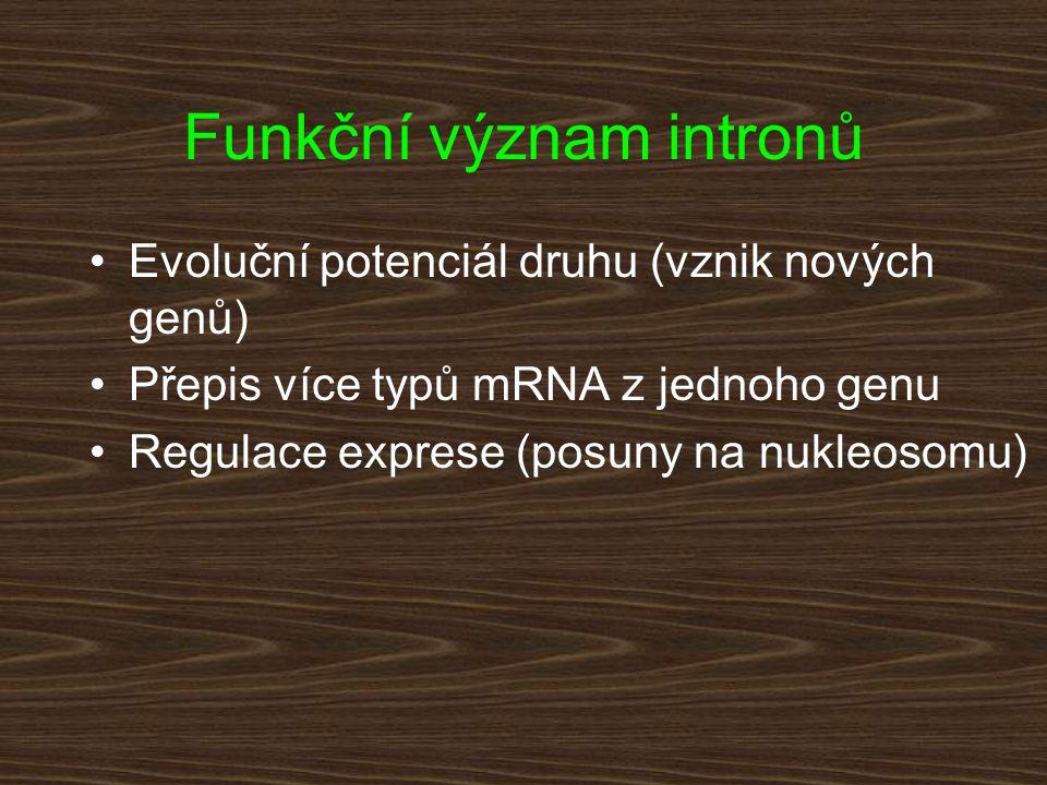 Funkční význam intronů