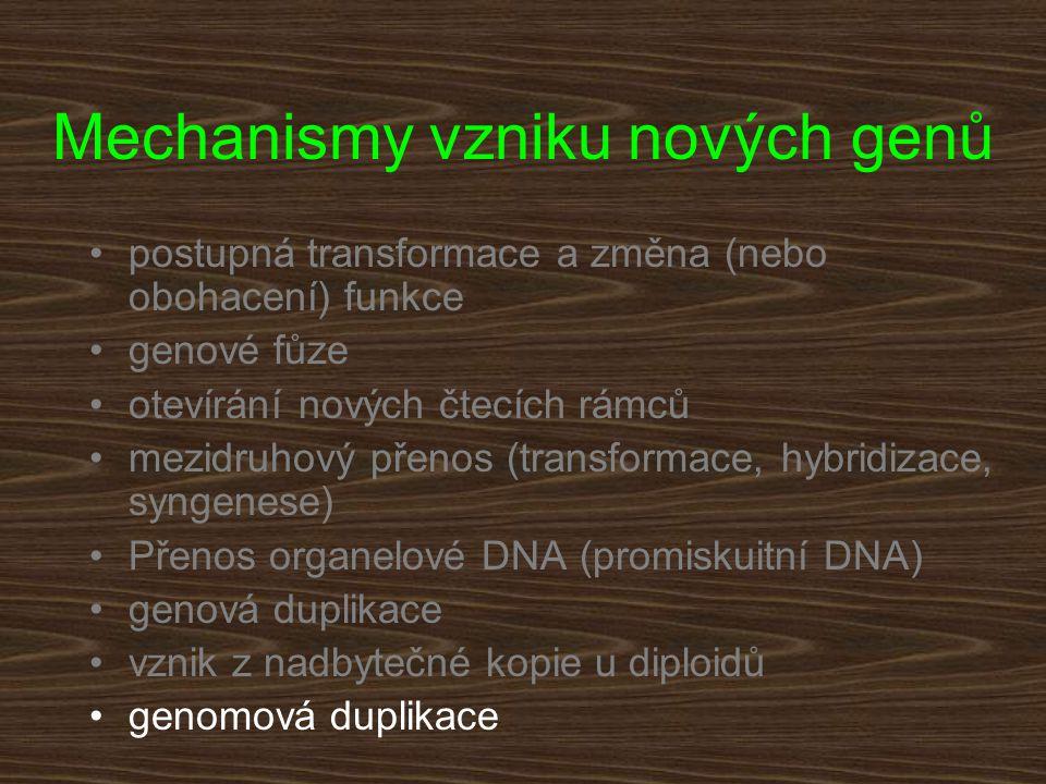 Mechanismy vzniku nových genů