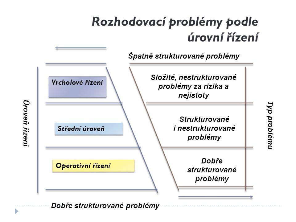 Rozhodovací problémy podle úrovní řízení