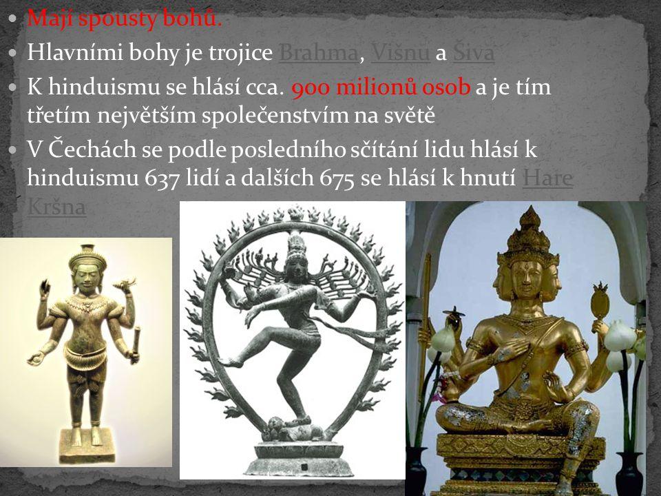 Mají spousty bohů. Hlavními bohy je trojice Brahma, Višnu a Šiva