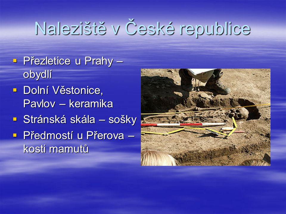 Naleziště v České republice