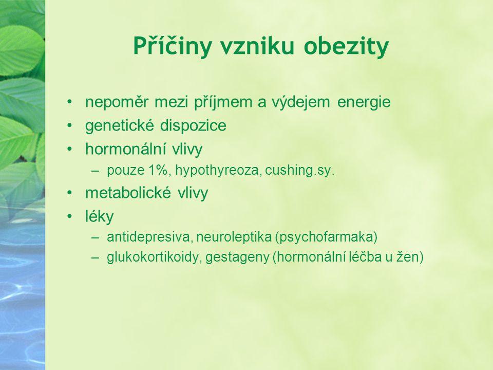 Příčiny vzniku obezity