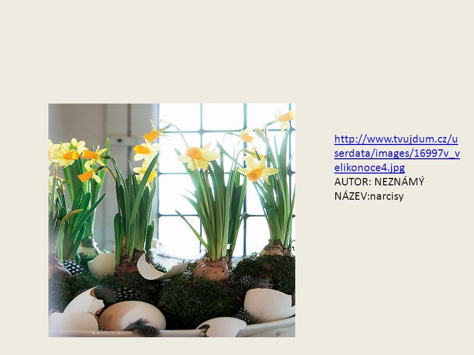 http://www.tvujdum.cz/userdata/images/16997v_velikonoce4.jpg AUTOR: NEZNÁMÝ NÁZEV:narcisy