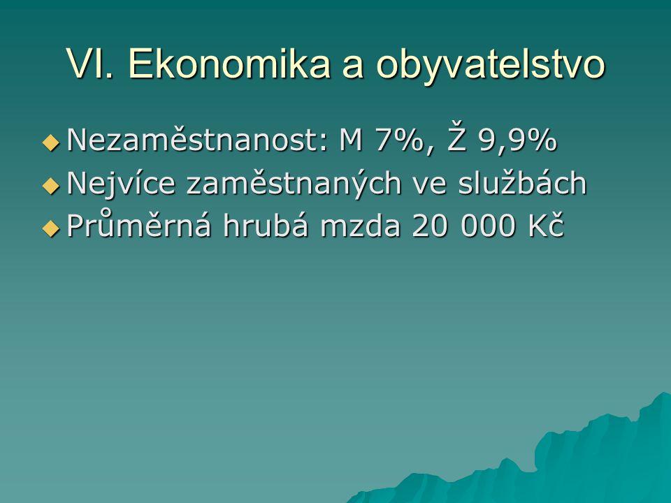 VI. Ekonomika a obyvatelstvo