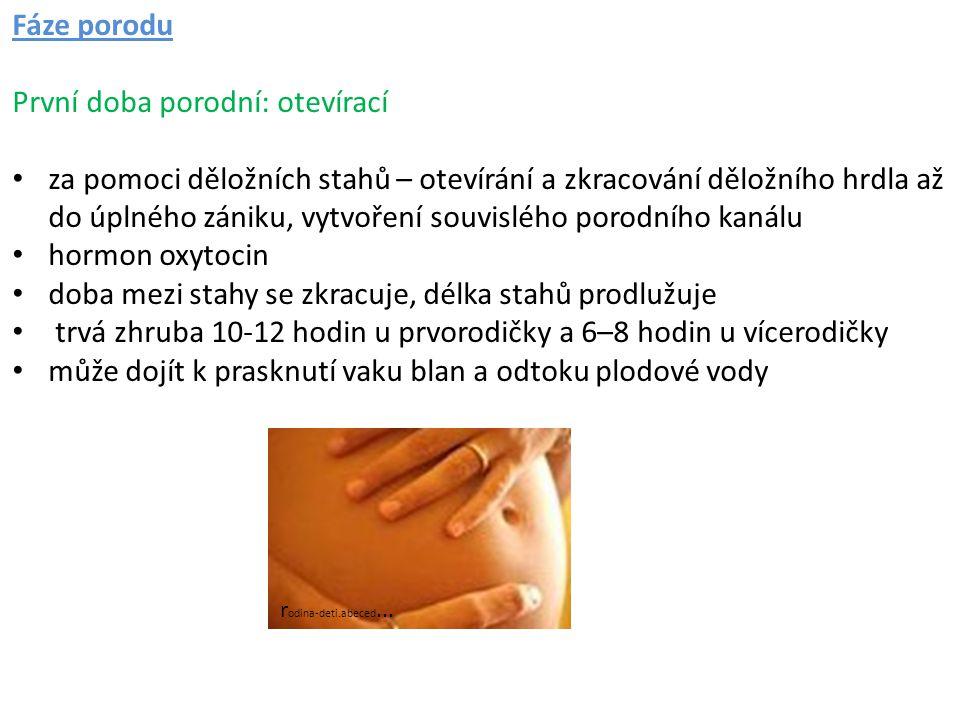 První doba porodní: otevírací