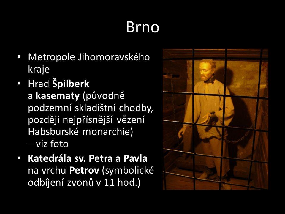 Brno Metropole Jihomoravského kraje
