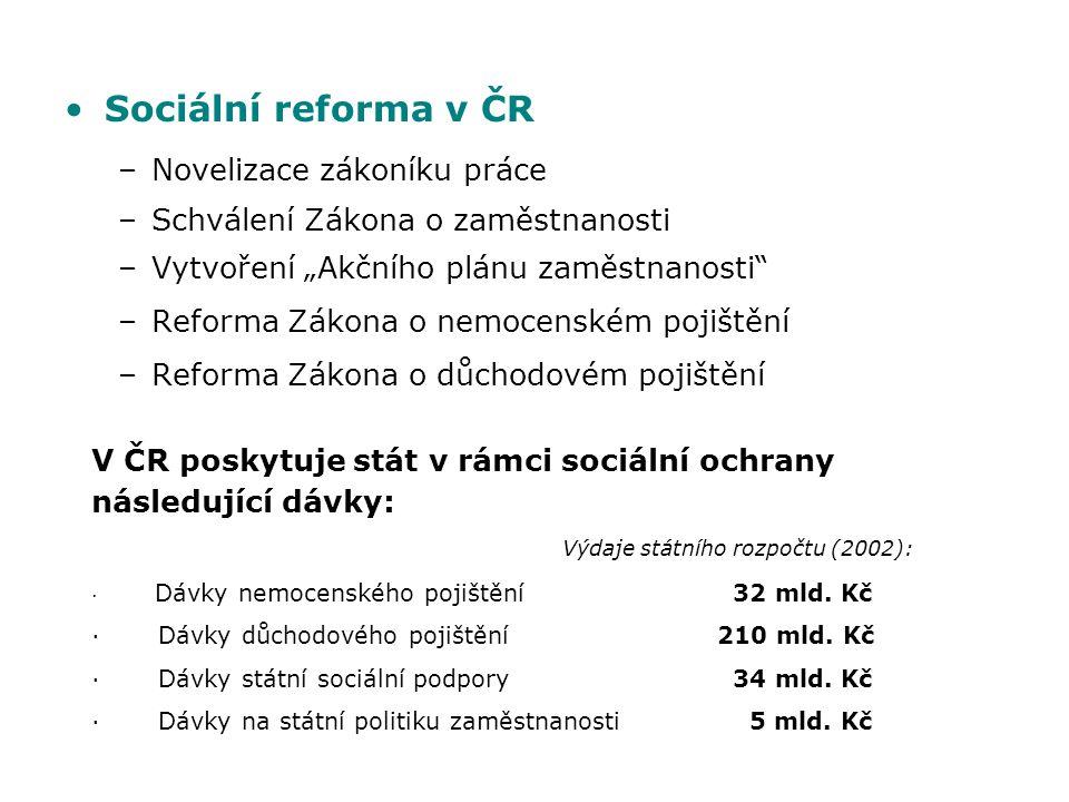 Sociální reforma v ČR Novelizace zákoníku práce