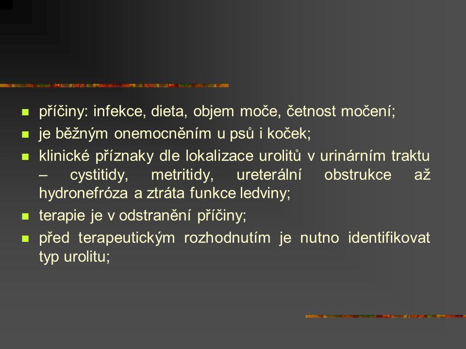 příčiny: infekce, dieta, objem moče, četnost močení;