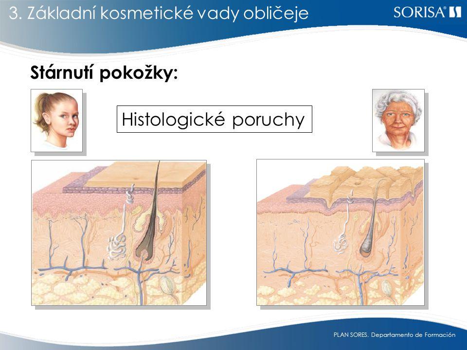 Stárnutí pokožky: Histologické poruchy