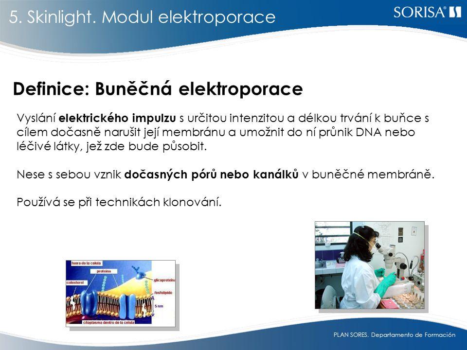 Definice: Buněčná elektroporace
