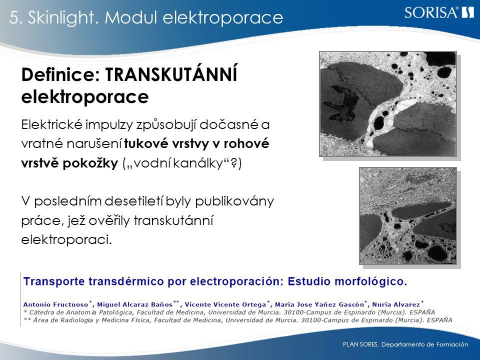 Definice: TRANSKUTÁNNÍ elektroporace